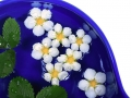 Daisies in a bowl